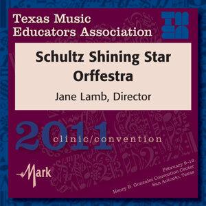 Schultz Shining Star Orffestra Foto artis