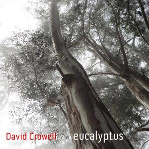 David Crowell Foto artis