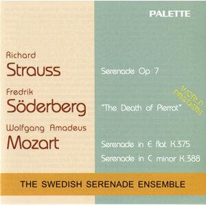 Swedish Serenade Ensemble Foto artis