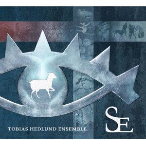 Tobias Hedlund Ensemble Foto artis