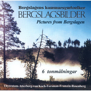 Bergslagens Kammarsymfoniker Foto artis