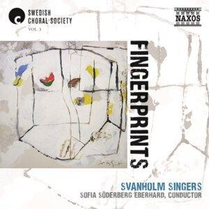 Svanholm Singers Foto artis