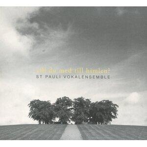St. Pauli Vokalensemble Foto artis