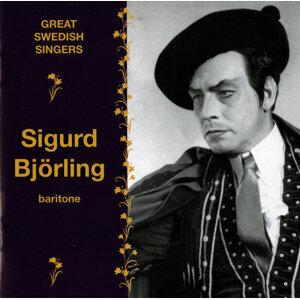 Sigurd Bjorling Foto artis