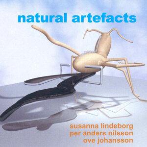 Per Anders Nilsson Foto artis