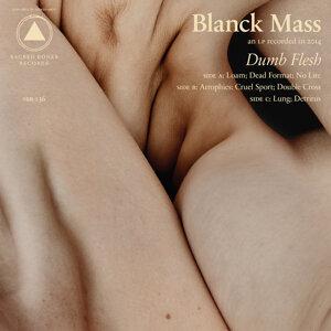 Blanck Mass 歌手頭像
