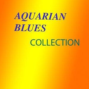 Aquarian Blues Foto artis