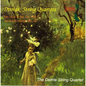 Delme String Quartet Foto artis