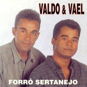 Valdo, Vael Foto artis