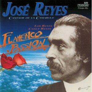 José Reyes & Los Reyes Foto artis