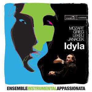 Ensemble Instrumental Appassionata Foto artis