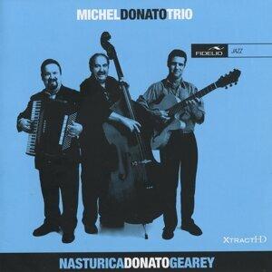 Michel Donato Trio Foto artis