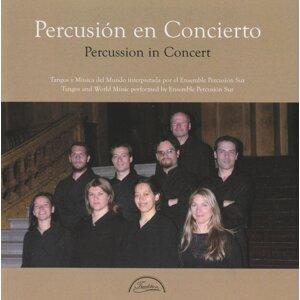Ensemble Percusion Sur Foto artis