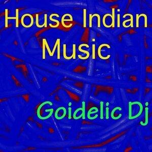 Goidelic DJ Foto artis
