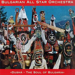 Bulgarian All Star Orchestra Foto artis