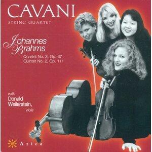 Cavani Quartet Foto artis