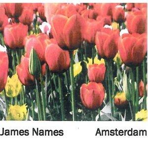 James Names Foto artis