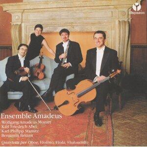 Amadeus Ensemble Foto artis