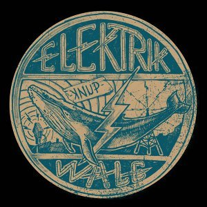 Elektrik Wale Foto artis