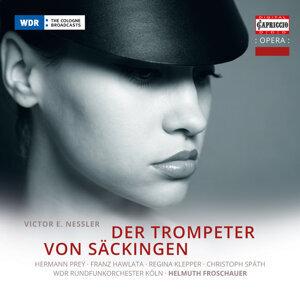 Helmut Froschauer Foto artis