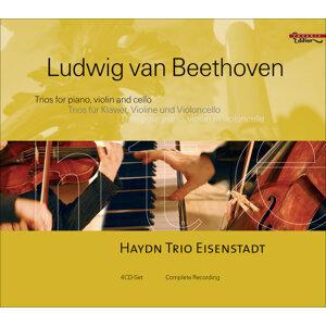 Eisenstadt Haydn Trio Foto artis