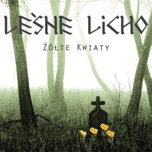 Leśne Licho Foto artis