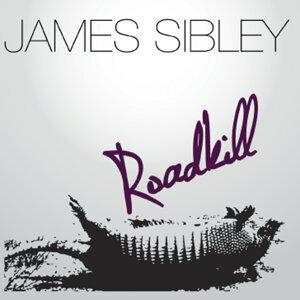 James Sibley Foto artis