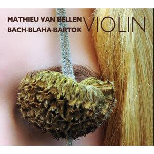 Mathieu van Bellen Foto artis