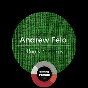 Andrew Felo Foto artis