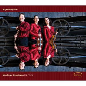 Vogl String Trio Foto artis