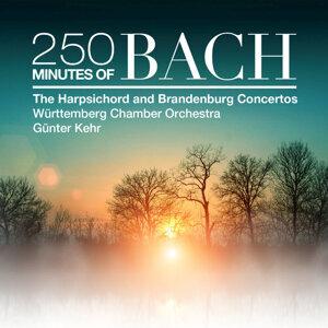 Wurttemberg Chamber Orchestra Heilbronn 歌手頭像