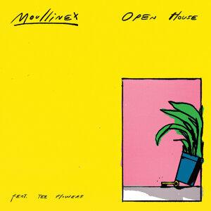 Moullinex 歌手頭像
