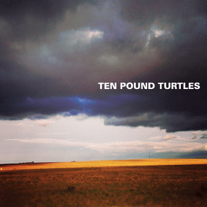 Ten Pound Turtles Foto artis