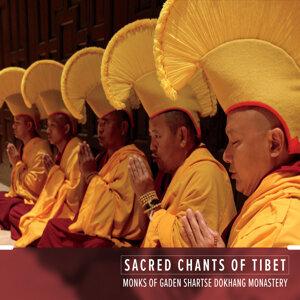 Monks of Gaden Shartse Dokhang Monastery Foto artis