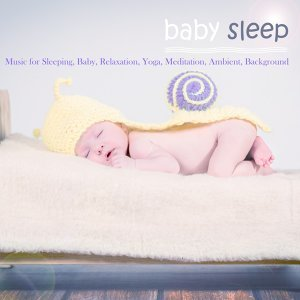 Deep Sleep Academy Foto artis