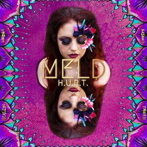 MELD Foto artis