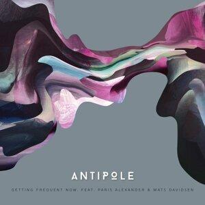Antipole Foto artis