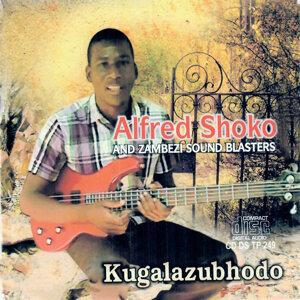 Alfred Shoko and Zambezi Sound Blasters Foto artis