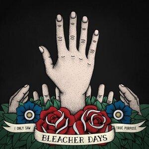 Bleacher Days Foto artis