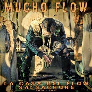 Mucho Flow Foto artis