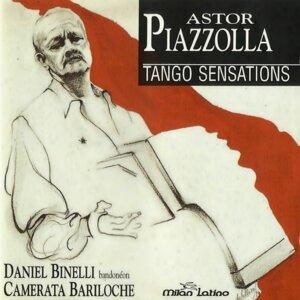 Daniel Binelli, Camerata Bariloche Foto artis