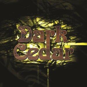 Dark Cedar Foto artis