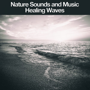 Nature Sounds and Music Foto artis