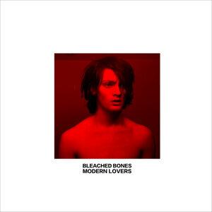 Bleached Bones Foto artis