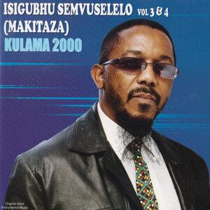 Isigubhu Makitaza Semvuselelo Foto artis