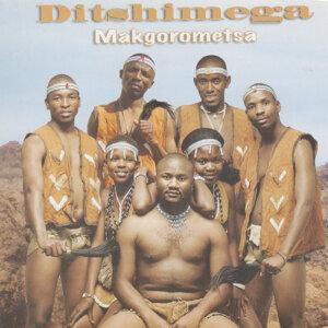 Ditshimega Investments Foto artis