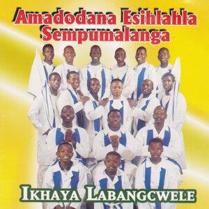Amadodana Esihlahla Sempumalanga Foto artis