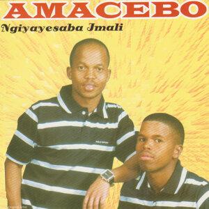 Amacebo Foto artis