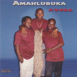 Amahlubuka Foto artis