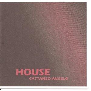 Angelo Cattaneo Foto artis